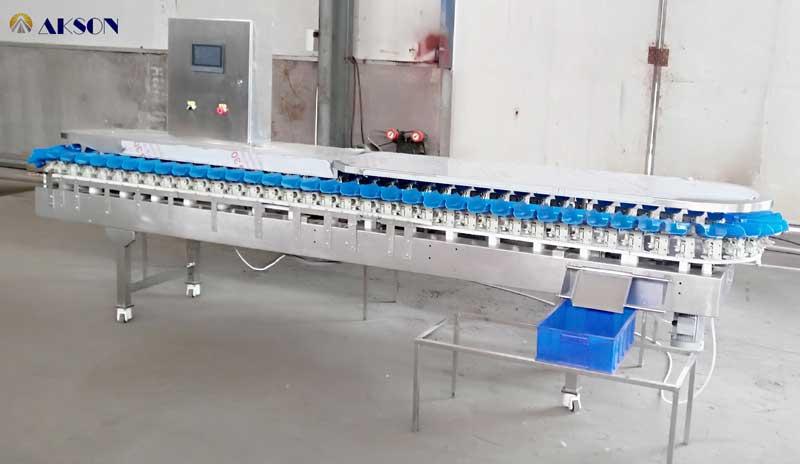 鲳鱼重量分选机的选购方法